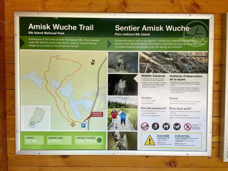 Elk Island hike at Amisk Wuche