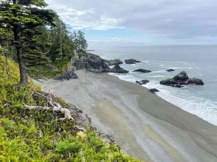 The West Coast Trail beach views