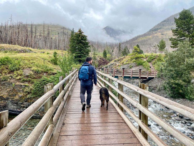 Blakiston Falls trail