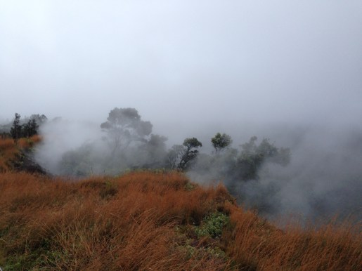 Mist and fog filled the air all around the volcano