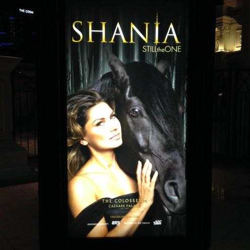 Shania was wonderful