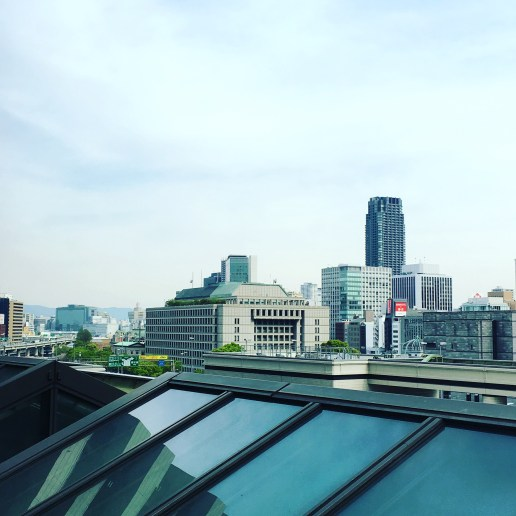 View of Osaka from the window