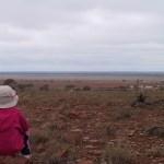 Outback Accommodation at Kallara Station - Tilpa