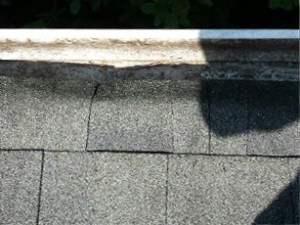 ARE YOU SPENDING YOUR WEEKEND CLEANING YOUR GUTTERS?