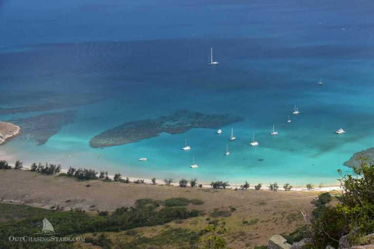 3 Days on Lizard Island with Goannas