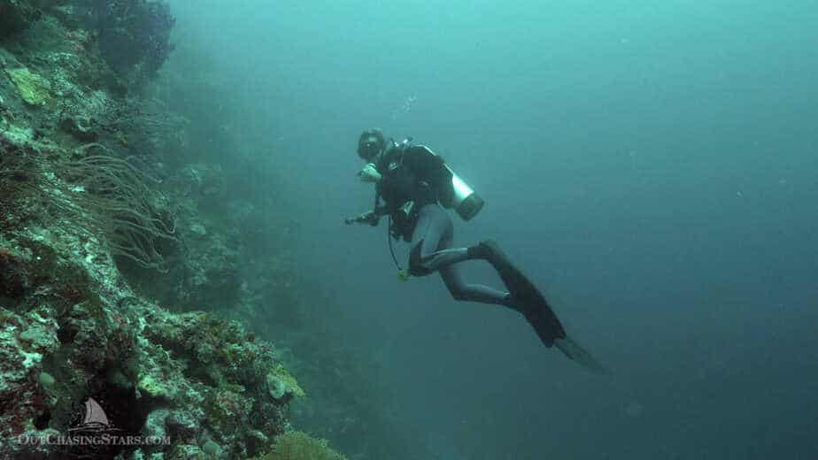 A diver on the wall of coral at Hoga Island in Wakatobi Indonesia.