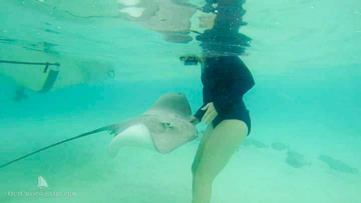 a woman swimming with stingrays