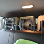 [愛犬と車旅] 雨振りの移動や車中泊時のトイレ対策は?