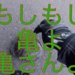 【モトブログ】道の駅スタンプラリーツーリング#1 福井編 CB400SF