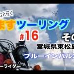 【ますツーリング】#16 ブルーインパルスを見た!その2【FXDL】【ローライダー】【ハーレー】