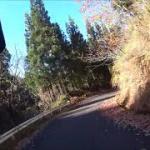 2018年11月 林道ツーリング(新潟県加茂界隈)セロー250にて