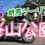 #85『桜山公園の冬桜を見に行く』群馬ツーリング(20181007)motovlog【モトブログ】