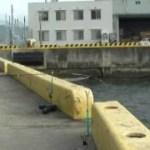 ゆうさやの釣り日記 vol.31 神戸港エビ撒きズボ釣り ハネ49センチ
