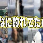【企画】こんなに釣れてたの?!釣り好き史に残る釣果を紹介!!