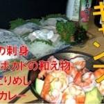 【車中泊キャンプ】太刀魚の刺身とグリーンカレー他