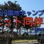 「福井県 夫婦 1泊キャンプ」安価!ペット可!福井市:鮎川園地キャンプ場