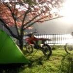 穴場キャンプ場の朝ライブ編バイクキャンプツーリング