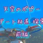 秩父 天空のポピー ダート林道探索 前編 XLR200R モトブログ    ツーリング オフ車