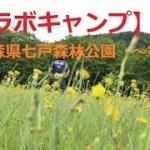 【コラボキャンプ】青森県七戸森林公園 ~後編