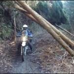 二人林道と二人キャンプ!千葉県君津で林道とキャンプ編 オフ車 CRF250R ツーリングセロー250