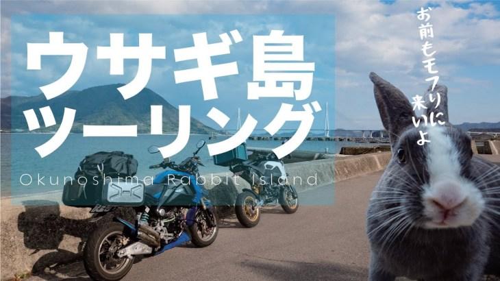 グロム沼の沼神さまと往く!ウサギ島GROMツーリング! 船を降りたらそこはモフモフ天国だった Okunoshima Rabbit Island
