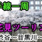 【自転車車載】クロスバイクで山手線一周&お花見ツーリング Part3 渋谷駅~目黒川~目黒駅【サイクリング】