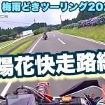 【 Kawasakiバルカン400クラシック 】乗りJayと行く梅雨どきツーリング2020 PART4 紫陽花快走路編#KTM500EXC FlatManmotovlogs モトブログ鹿児島#168