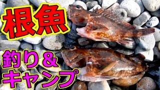 ソータローと栗吉の釣り&キャンプ ~根魚を釣ってキャンプ場で食う!~