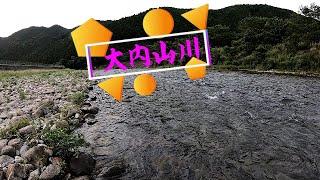 2020 鮎釣り(大内山川)