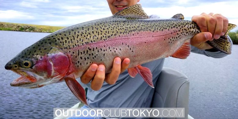 Trout Fishing Complete Guide