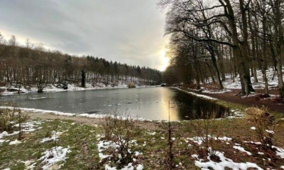 Waldsee Niedernhausen