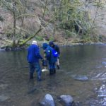 Students collecting macroinvertebrates from stream