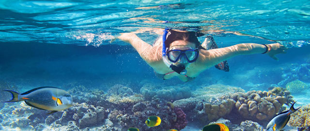 Crystal Clear Diving