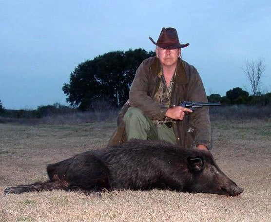 where to shoot a feral hog