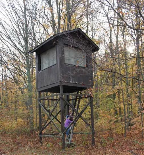 Building An Elevated Deer Blind