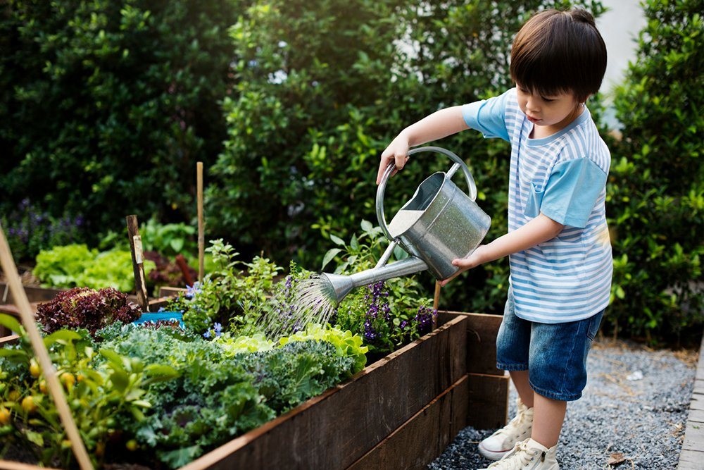 Gardening with Kids: Expert advice on getting your family ... on Gardening  id=15823