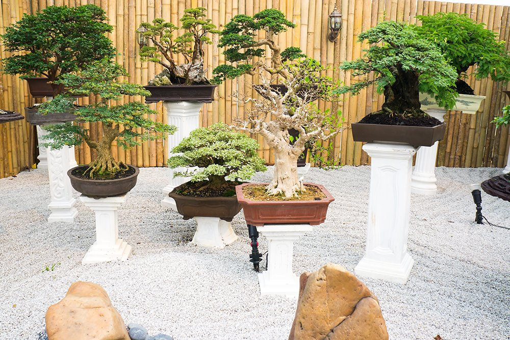 20 Japanese Botanical Garden Design Ideas To Inspire Your ... on Backyard Japanese Garden Design Ideas id=25287