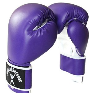 Purple Boxing Gloves 12oz
