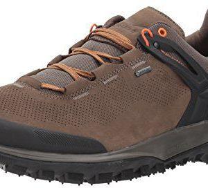 Salewa Men's Wander Hiker GTX Hiking Shoe, Walnut/New Cumin, 9