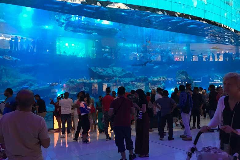 Natuurlijk staat het grootste aquarium ter wereld in de Dubai Mall.Natuurlijk staat het grootste aquarium ter wereld in de Dubai Mall.