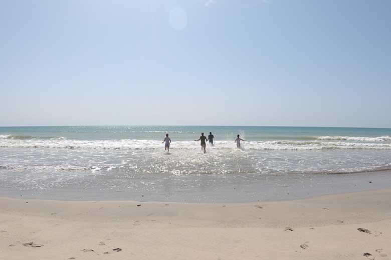 Zwemmen met zeeschildpadden.... en tegen een sidderaal aanlopen.