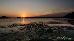 Spring Lake Sunrise 127