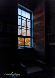 Augusta - Dells Mill 079