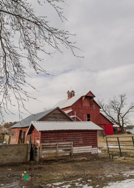 Blair Amish Project 051