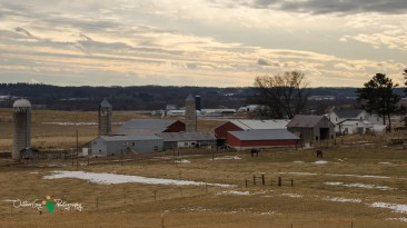 Blair Amish Project 143