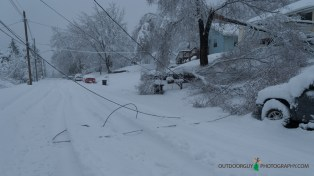 snow storm - cable and power wires down