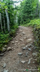 Trail to Upper Falls & Devil's Kettle