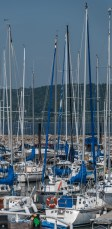 Lake City Harbor