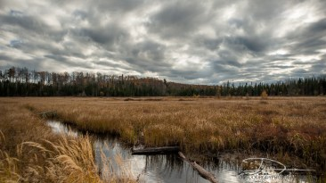 OutdoorGuyPhotography-3023