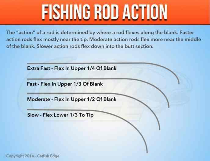 best catfish rod